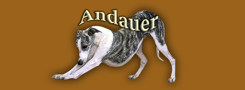 Andauer Whippets